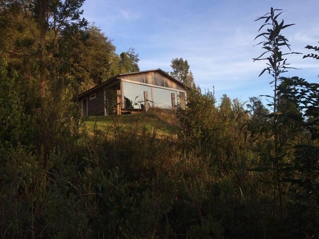 Hermosa Cabaña Con Vista a la Selva Valdiviana