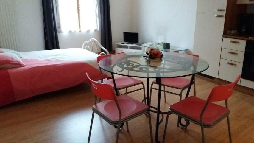 Grand Studio en centre ville - Châlons-en-Champagne - Appartement
