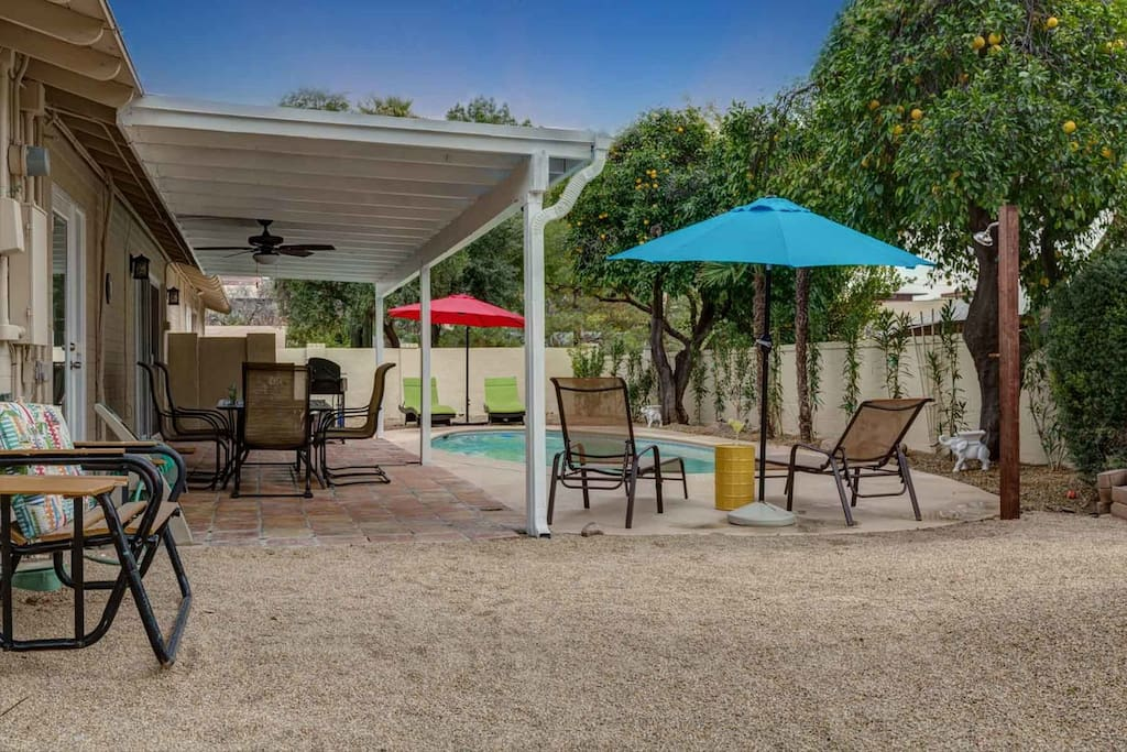 Private back yard with pool and covered patio