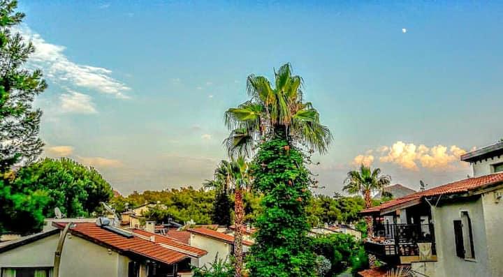 Peaceful Terrace