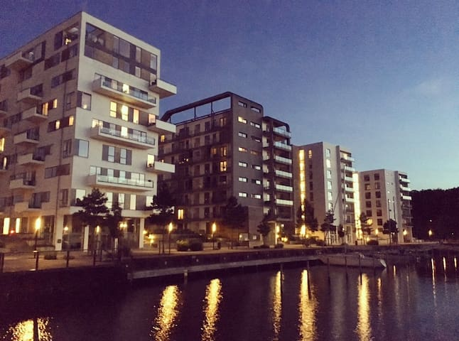 Luxurious apartment in central Odense near pool