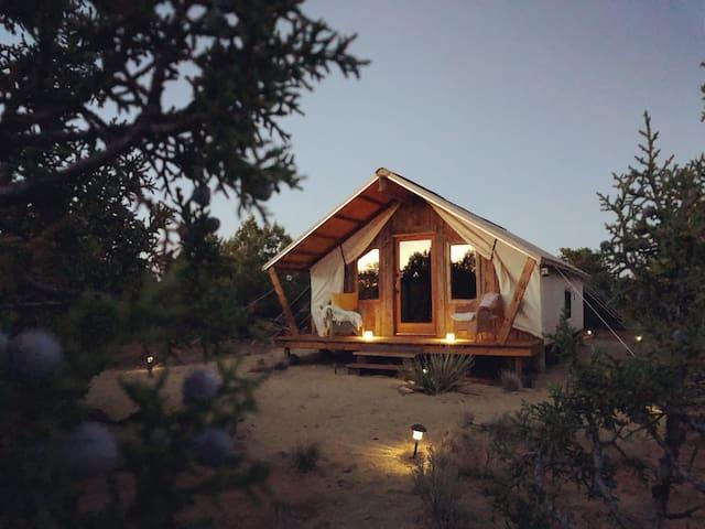 Juniper's Tent - Desert Glamping