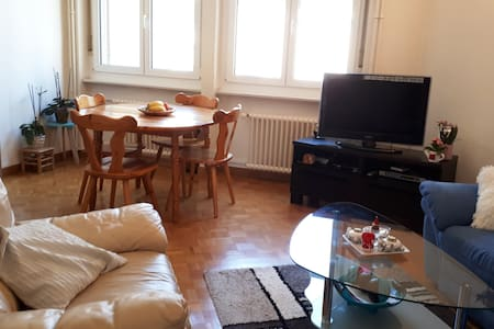 Nice appartment: 10 min from UN, lake and airport.