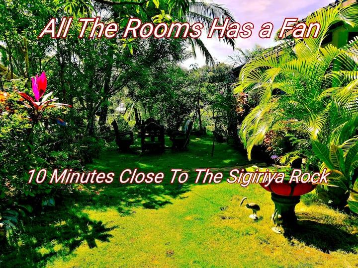 the accomadation located 800m from Sigiriya rock