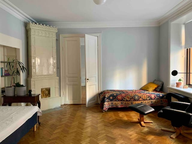 Spatious  room in a historical city center
