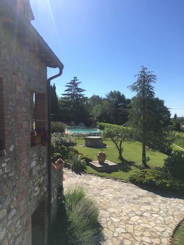 Residenza Cornino Olivo 4