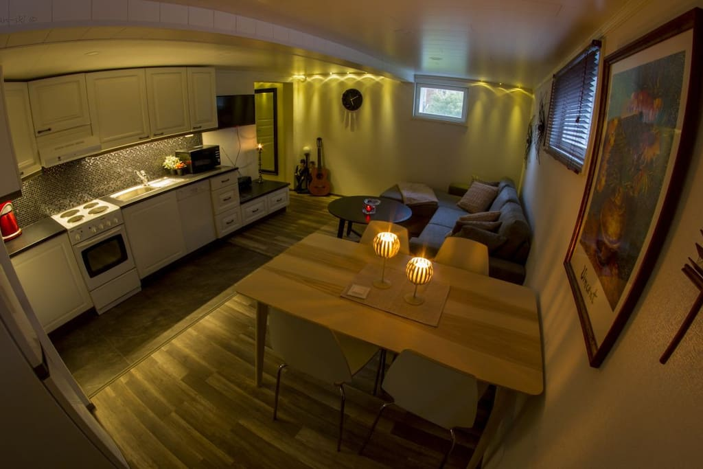 Kitchen and livingroom