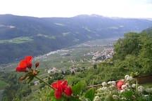 Schöner Blick ins Tal