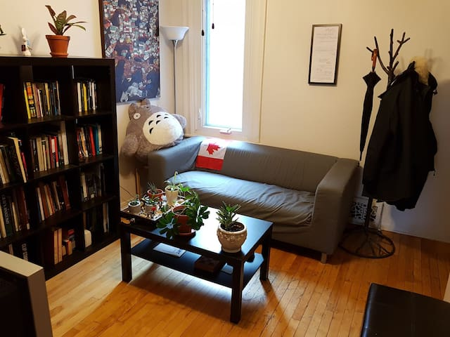 1 Bedroom Apartment + Parking in Downtown Ottawa