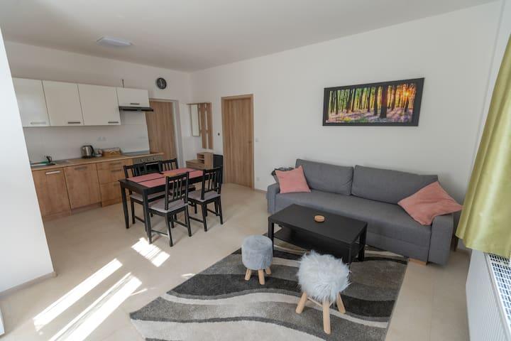 Nově zrekonstruovaný apartmán 201 v podhradí