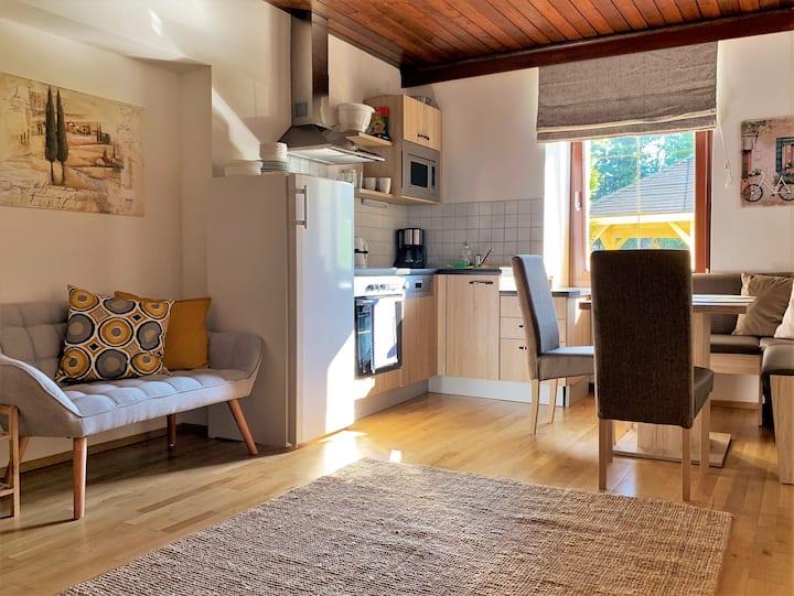 Cozy apartment for 5 persons near Hallstatt