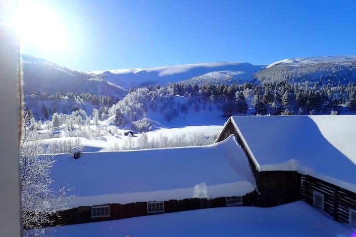 Enjoy contact with norwegian nature