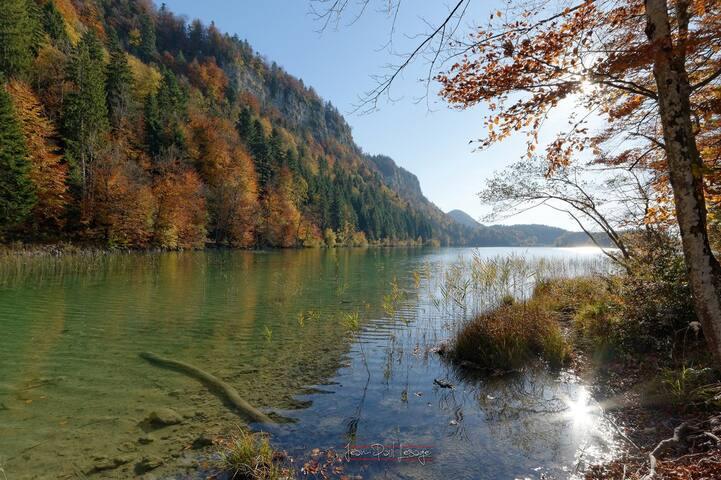 Lacs des Maclus