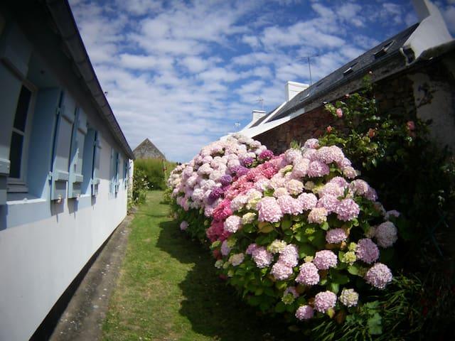 Studio Sauzon dans village rural et familliale