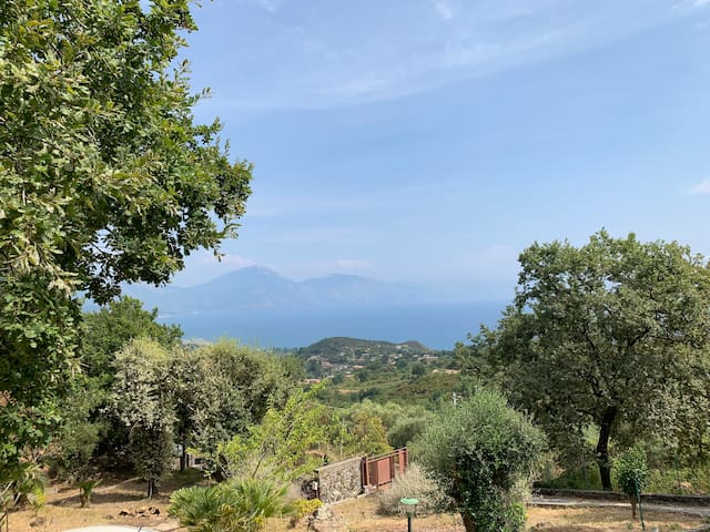 Villa Panoramica Le Querce