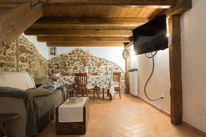 Casa dell' Olmo - Civitavecchia - Appartement