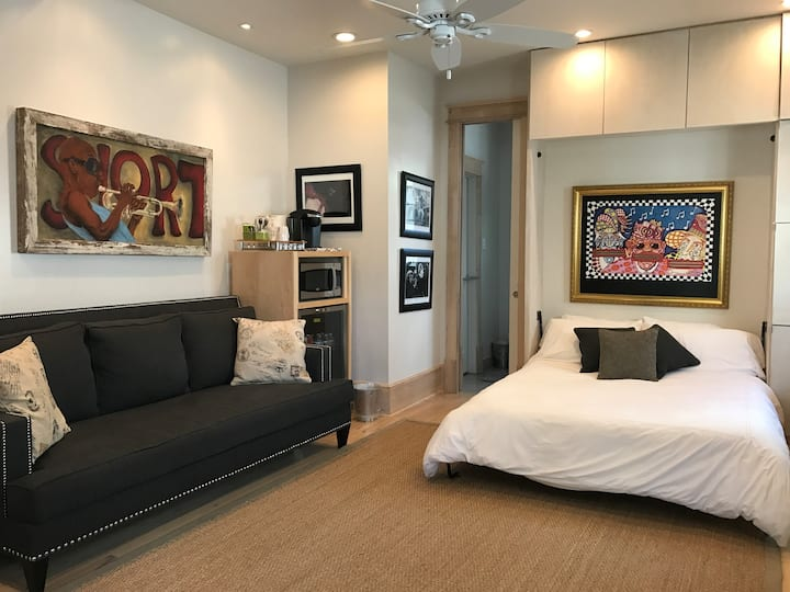 Luxury Studio St.Charles Ave limited use pool/spa