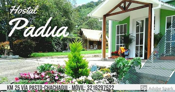 Hostal Padua un paraíso para descansar o trabajar.