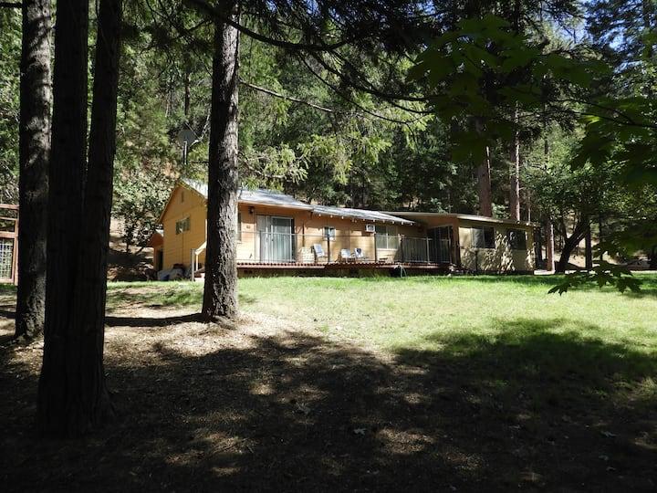 Quad P Cabin on the Trinity river