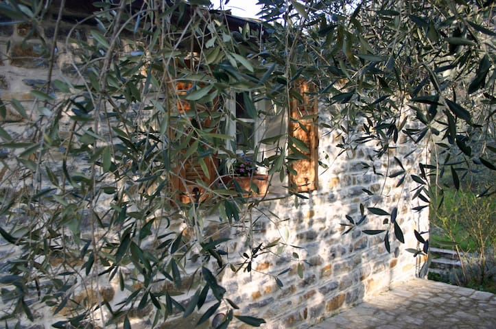 Holidays under the olive trees  - Casa Progallo - Montalto Ligure - Huis