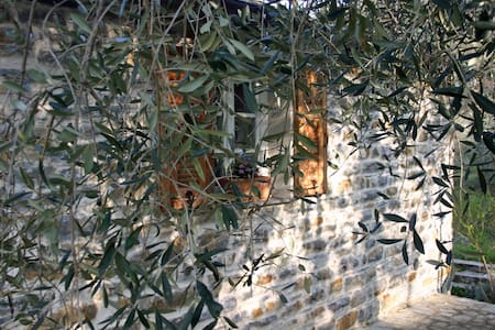 Holidays under the olive trees  - Casa Progallo - Montalto Ligure