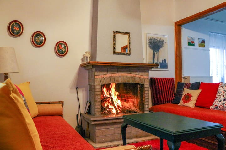 Warm lake view home with fireplace near Ioannina