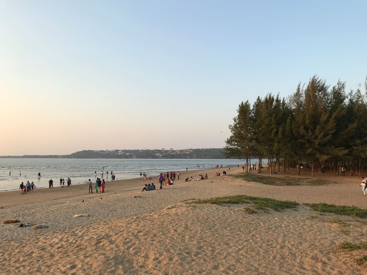 This is  the view of miramar beach which is 2 minutes walking distance from  my place for evening sunset view and lots of fast food stalls to have good time with the family