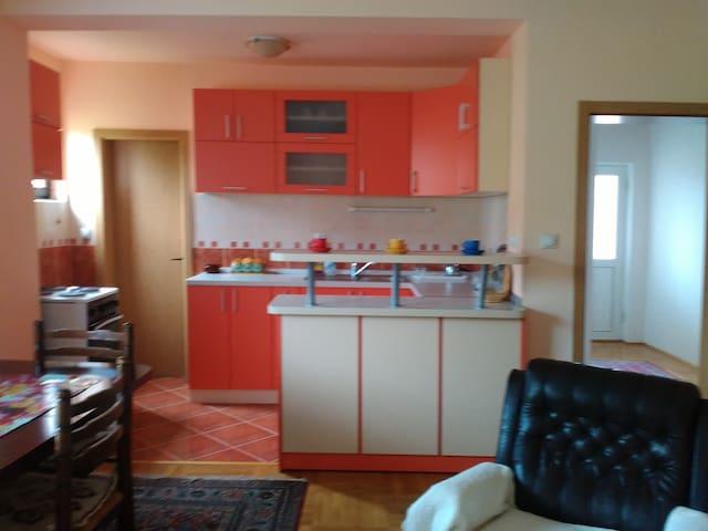 Apartman ,,Smeštaj Raković''