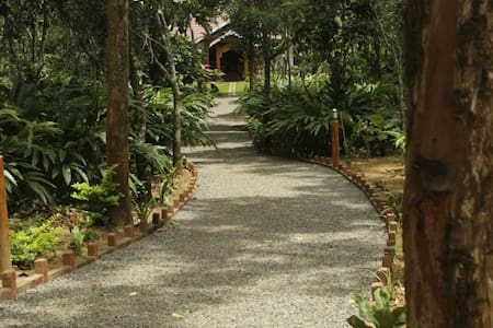Home stay, villa amidst plantations!