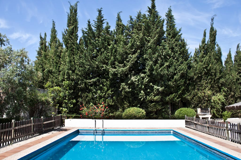 Gran piscina privada de 8 x 5 metros.