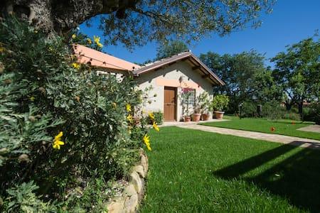 The Garden of Eden self-contained villa - Calcinelli