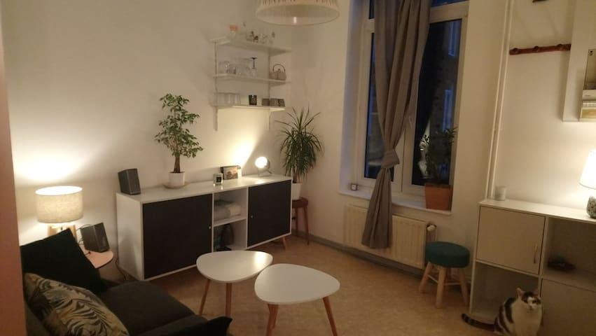 appartement cosy face au th tre s bastopol appartements louer lille nord pas de calais. Black Bedroom Furniture Sets. Home Design Ideas