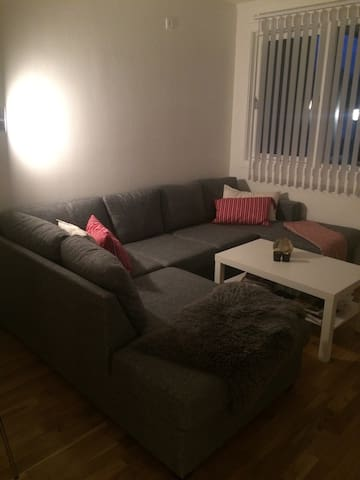 Cozy 1bd apartment. - Verdal - Flat