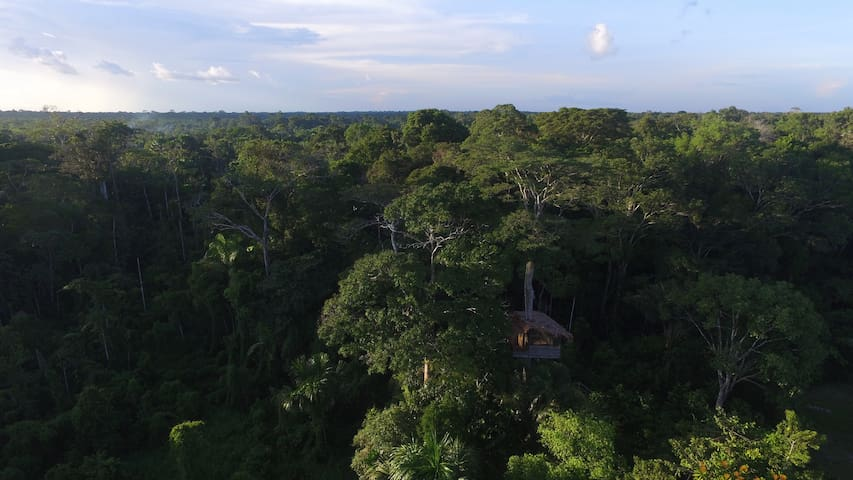 treehouse or bungalow in Natural Reserve