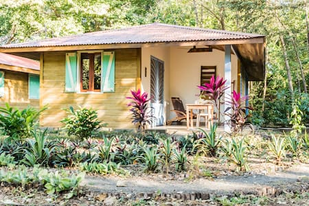 Eco-Friendly & Comfy Cabin in Playa Avellanas