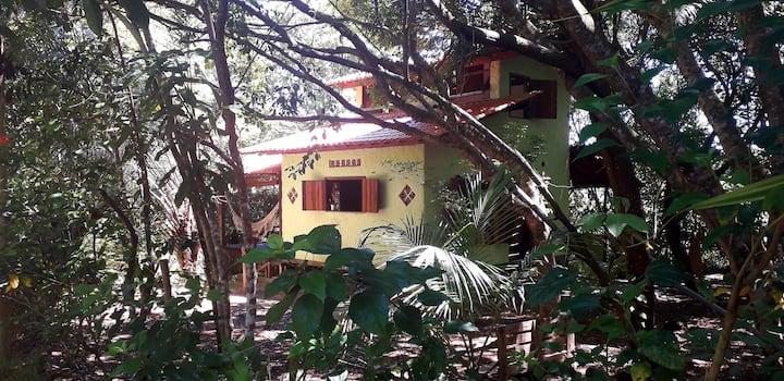 Beautiful House in the woods - Boipeba is Paradise