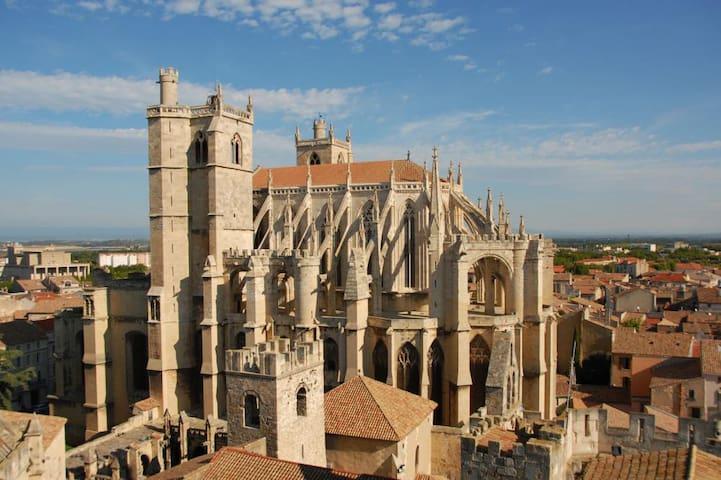 Cathédrale St Just à Narbonne.