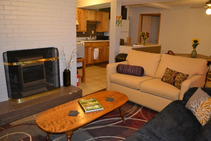 Downtown Greenville Cozy Cavern - Greenville - Appartement