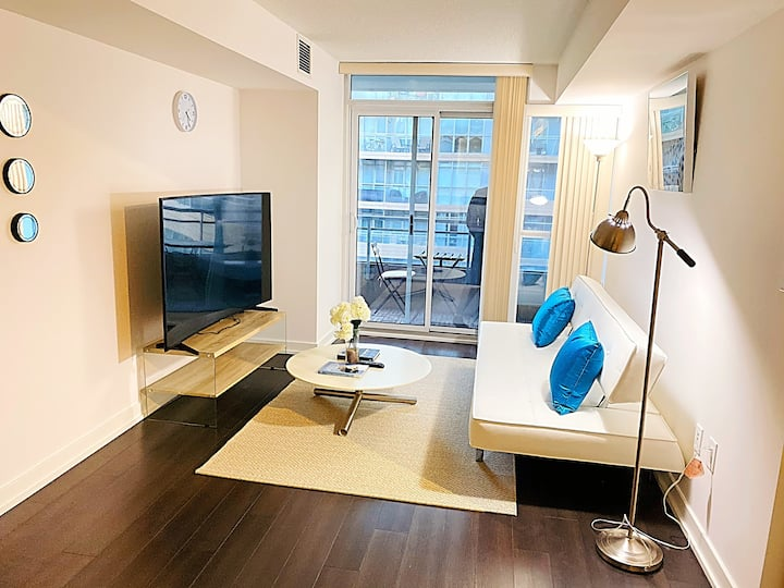 BEAUTIFUL CONDO IN THE CENTRE OF DOWNTOWN