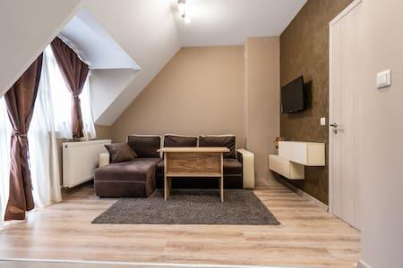 Top Centre Luxury Apartment