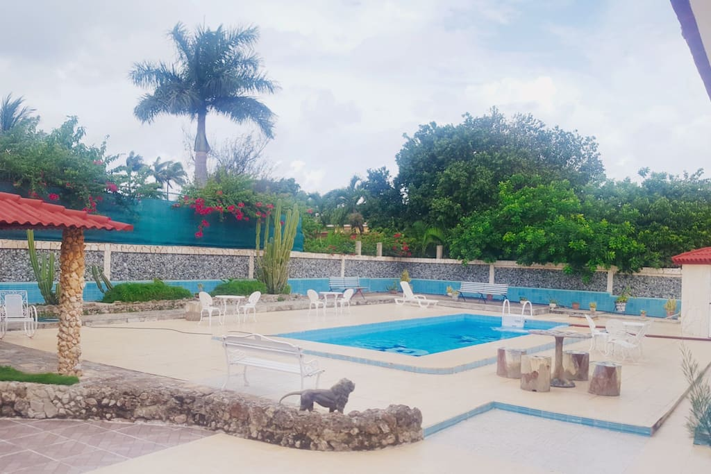 Piscina para uso exclusivo de los huéspedes disponible hasta las 12:00am.