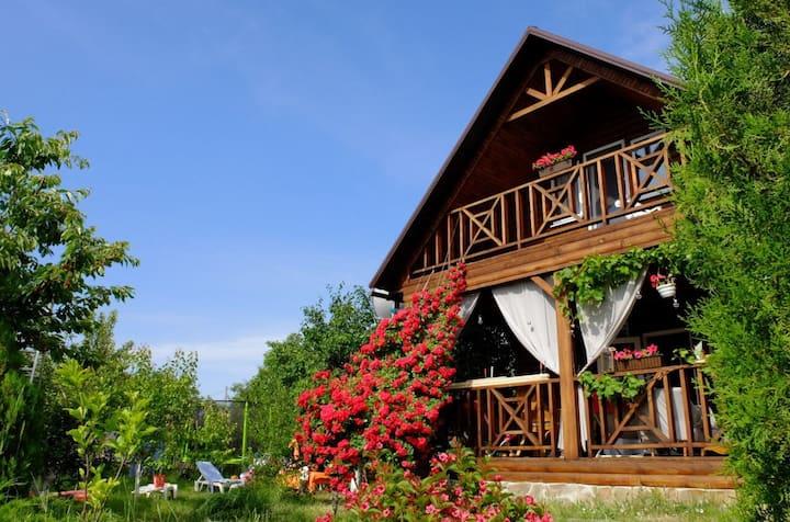 Деревянный дом на большом участке для отдыха