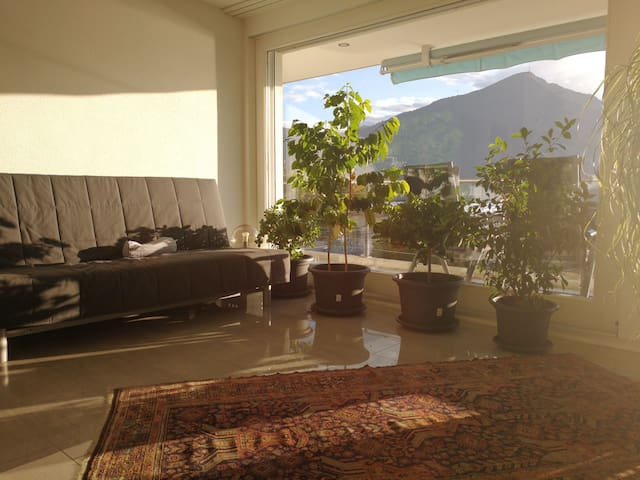 Near Zug city, modern private flat, full panorama
