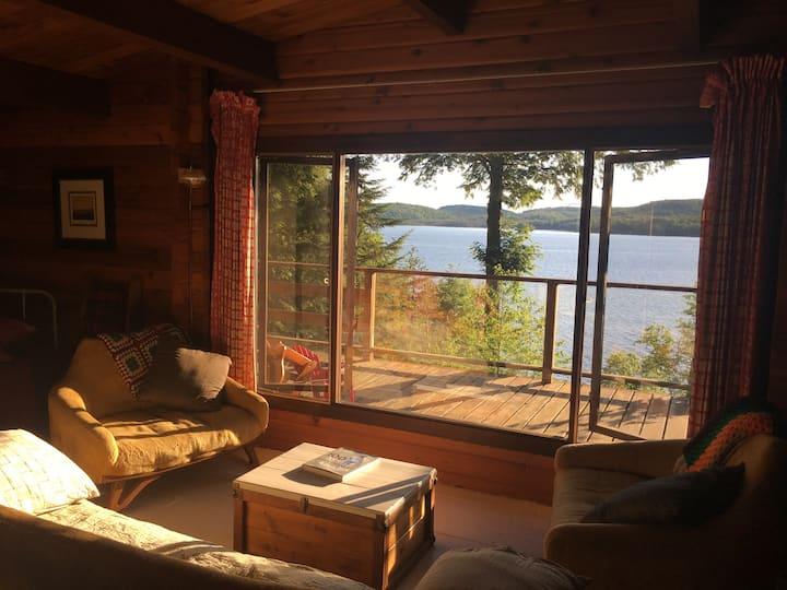 Algonquin Park Retreat - cedar cabin in the woods