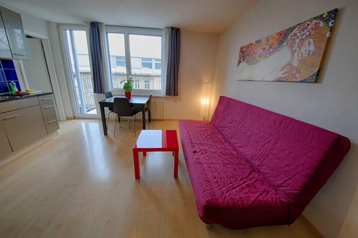 Letzigrund Silver Apartment