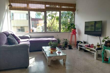 Lovely, cozy and bright home - 墨西哥城(Ciudad de México)
