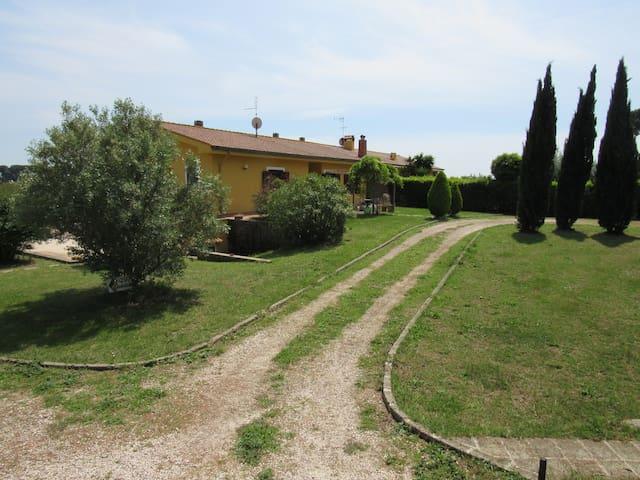 Miniapp. Roma Nord nel verde 30' dal centro - Rom - Lejlighed