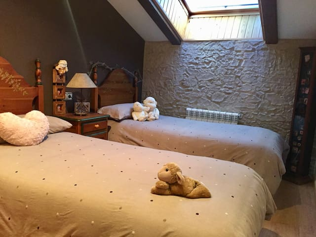 Habitación en pleno Pirineo Aragones - Jaca - Lejlighed