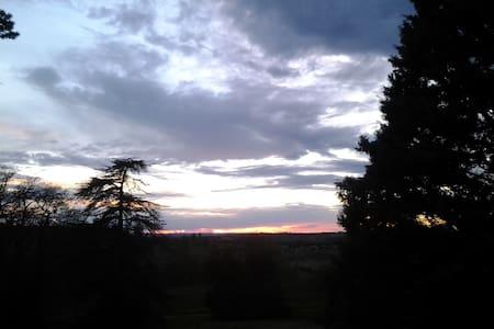 LA CLE DES CHAMPS - Avignonet-Lauragais - Şato
