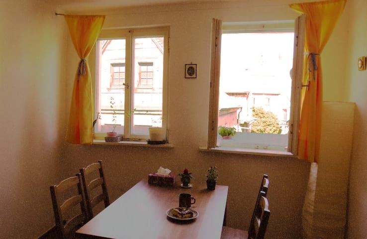 ULTRACENTRAL Loft~ Wohnung direkt in der Altstadt - Bayreuth - Pis